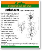 D51 Buchsbaum