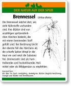 E26 Brennessel
