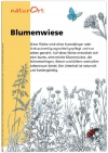 L2_naturOrt_Blumenwiese