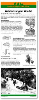 C20 Waldnutzung im Wandel